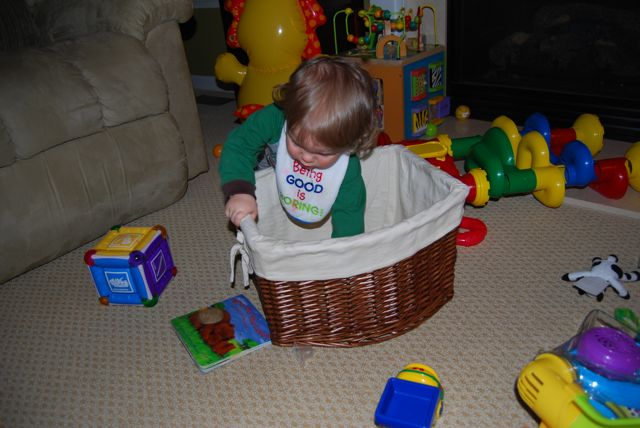 Basket Boy