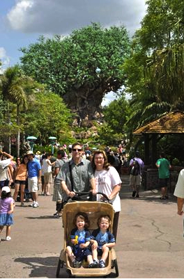 At Animal Kingdom
