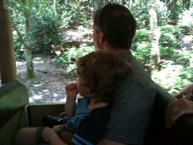 Dad and Alex on Safari