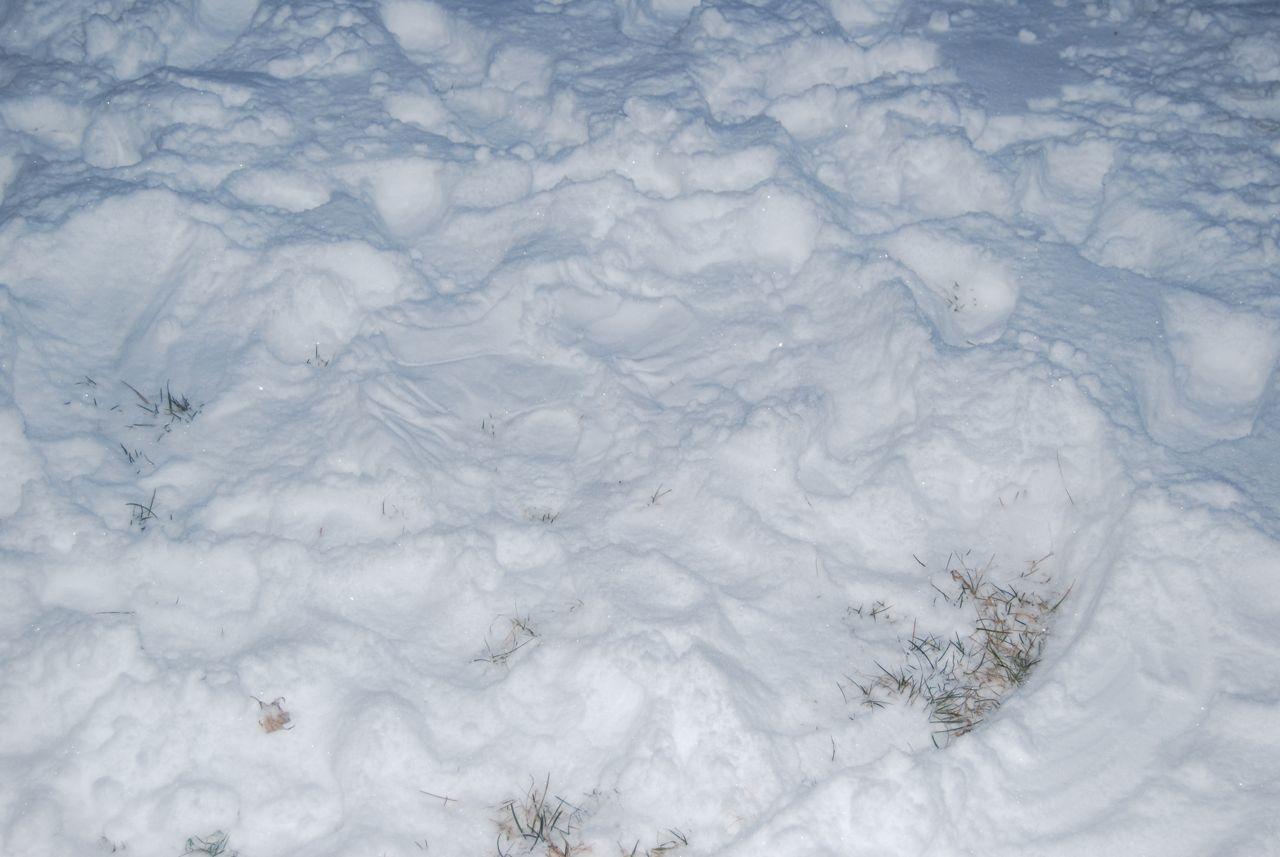 Adams snow angel