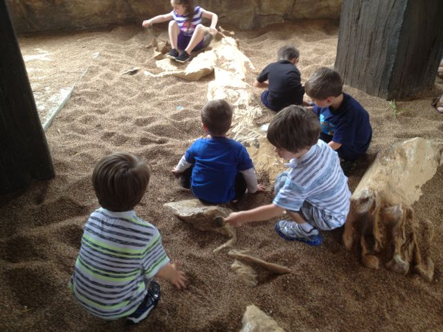Digging-up Bones