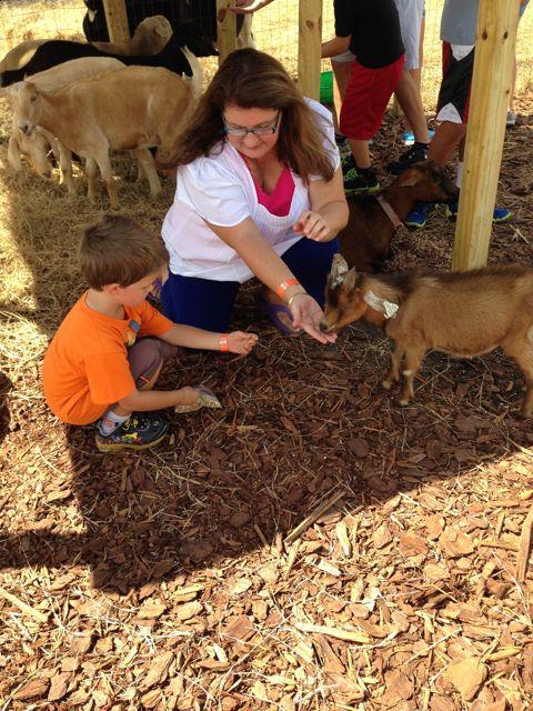 Alex feeds the animals
