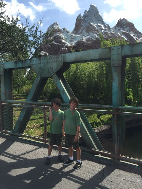 Mt Everest Bridge