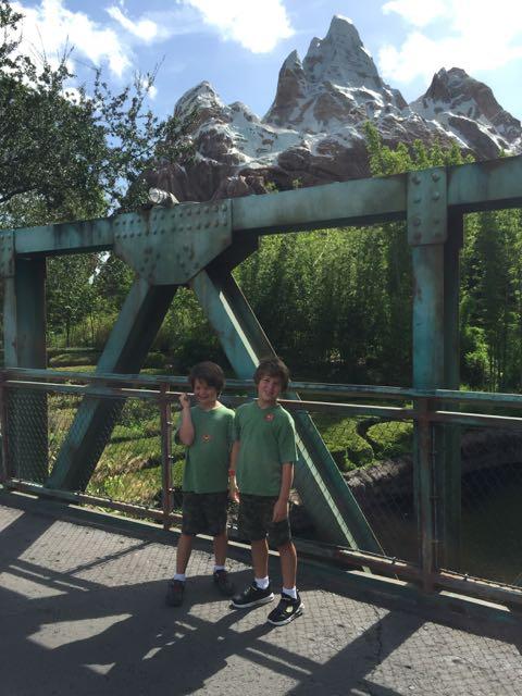 Mt Everest Bridge