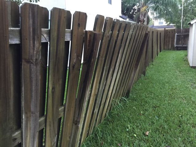 Fence Leaning